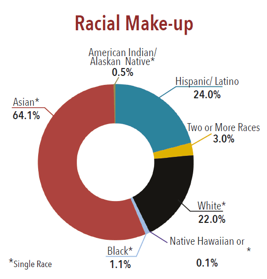 Racial Make-up graph